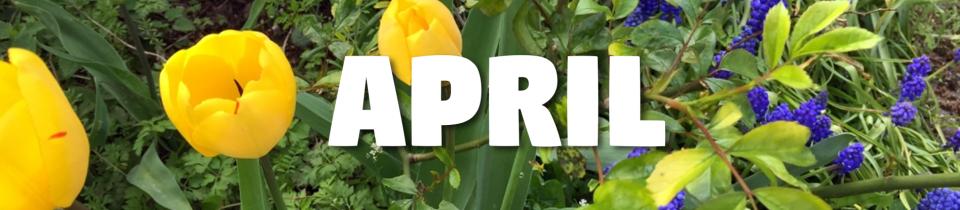 Laufbericht April